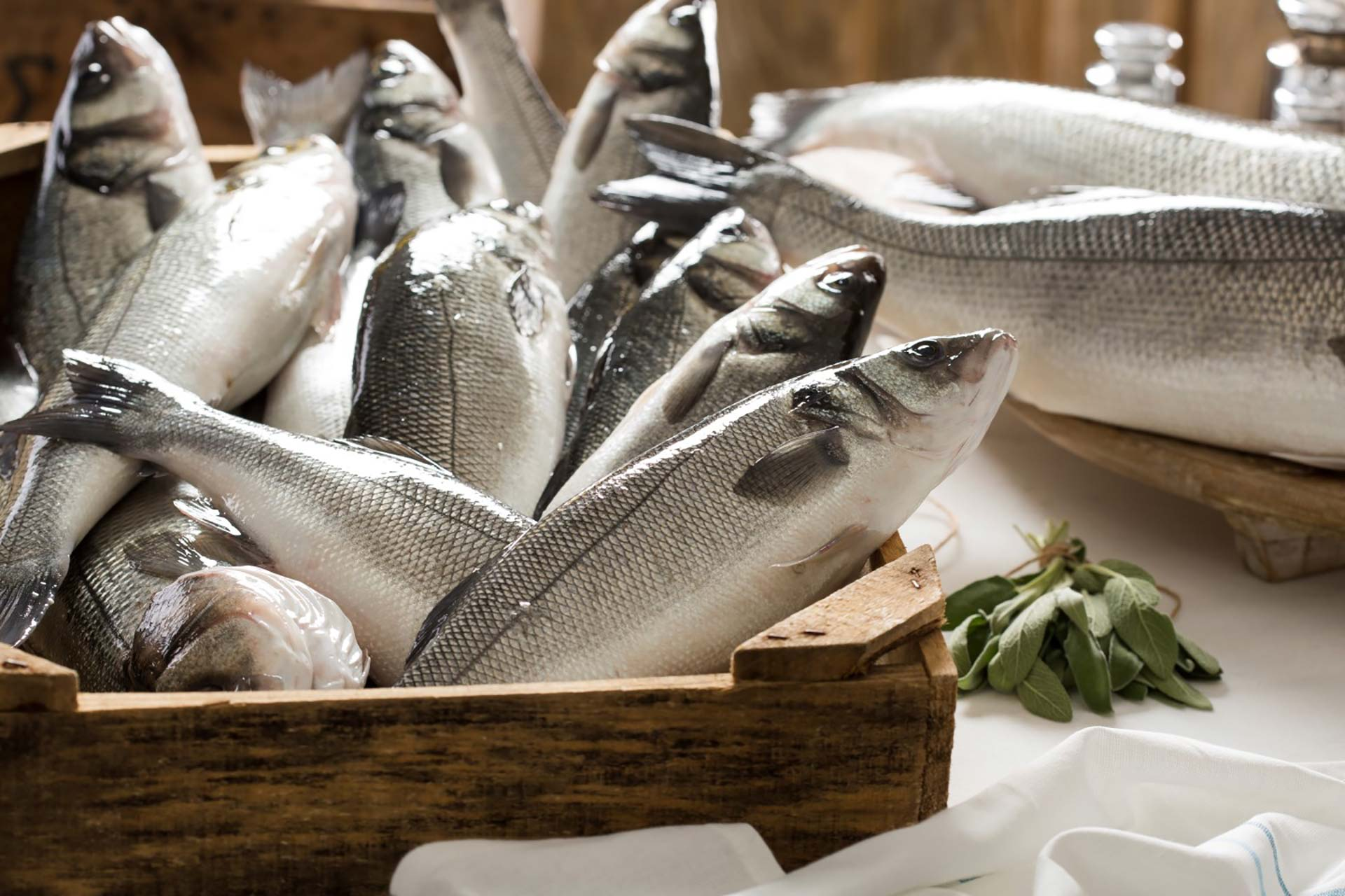 Kefalonia Fisheries / Seafood Products - Organic Sea Bass
